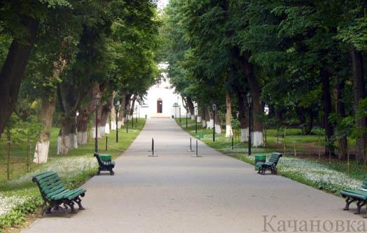 парк в Качановке