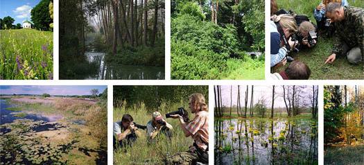 природный парк вблизи Ични