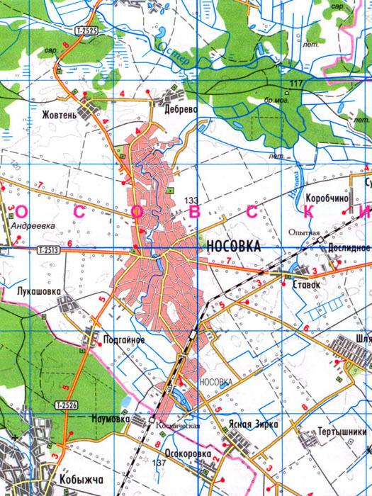 карта города Носовка