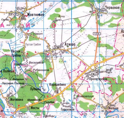карта села Атюша в Черниговской области