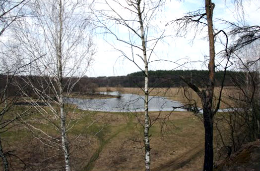фото вблизи села Городище