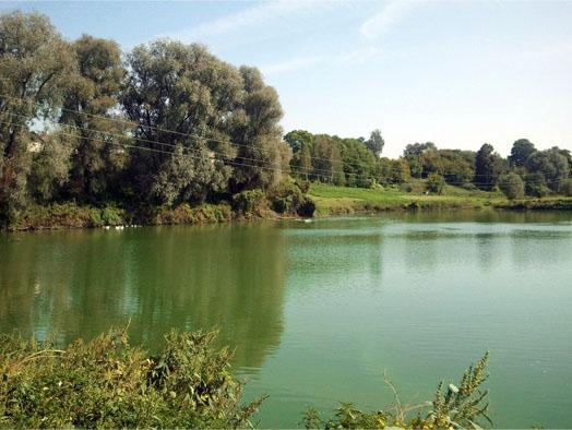 ставок вблизи села Иванков