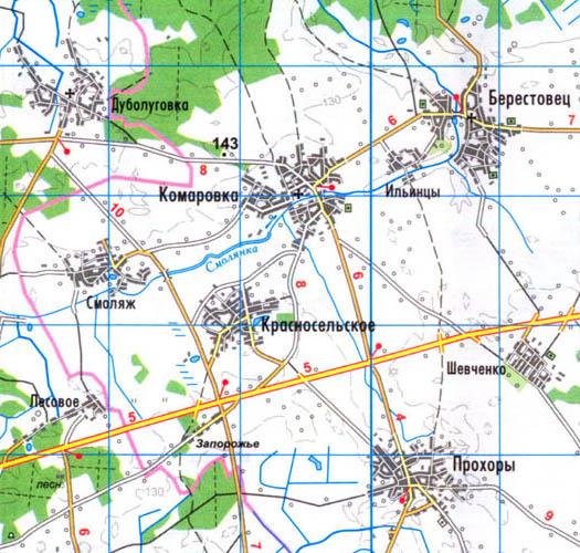 Карта села Красносельское