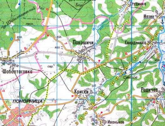 карта села Покошичи