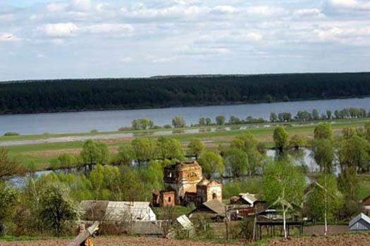 фото села Радичев, Коропский район