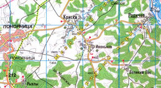 карта села Великий Лес в Коропском районе