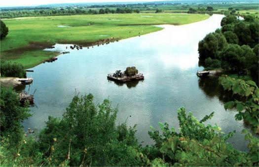 работа парома на реке Десна