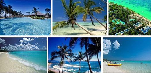 Доминиканы